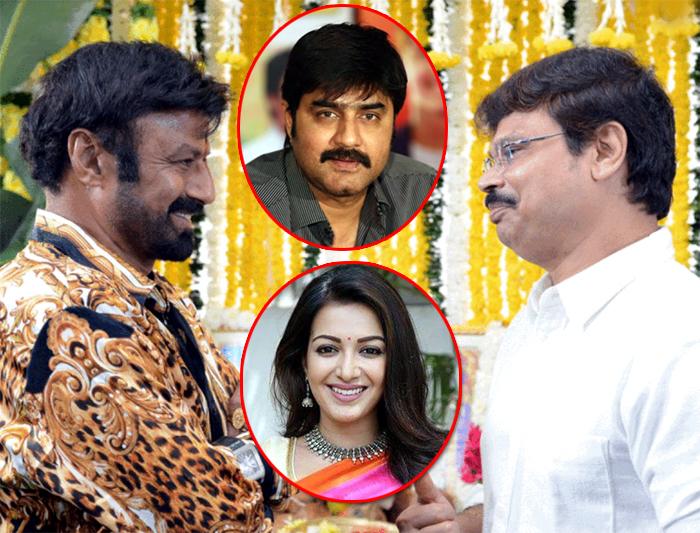 balayya- boyapati movie,catherine tresa,nandamuri balayya,actor srikanth   బాలయ్య మూవీకి హీరోయిన్, విలన్ ఫిక్స్!