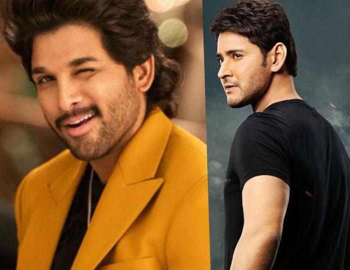 allu arjun,mahesh babu,mass,class,fight,tollywood,box office  'అల' వర్సెస్ 'సరిలేరు' ఫైనల్ టాక్ ఇదే!
