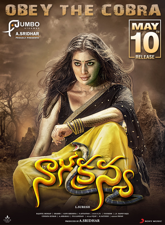 nagakanya movie,release date,may 10th,lakshmi raai,varalakshmi sarath kumar,jai  మే 10న ముగ్గురు హీరోయిన్స్ అల్లాడిస్తారట!