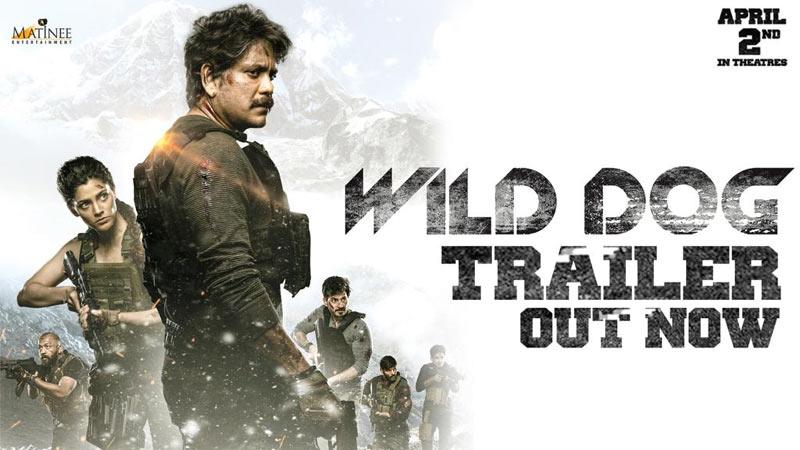 nagarjuna,wild dog,wild dog trailer out,megastar launches wild dog trailer,wild dog april 2nd release,wild dog movie review,nag wild dog review,nagarjuna wild dog  ఇంట్రెస్టింగ్ వైల్డ్ డాగ్