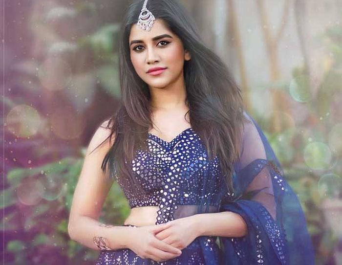 nabha natesh,disco raja,nabha natesh role,ismart shankar  ఇలా అయితే నభా.. కష్టమే..!