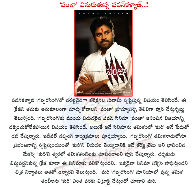 pawan kalyan,panjaa movie,panjaa tamil version kuri movie details,panjaa releases tamil as kuri,pawan gabbar singh craze in tamilnadu,gabbar singh craze use tha panjaa makers,panjaa movie team,panjaa movie makers,panjaa as kuri in tamil,kuri movie details  pawan kalyan, panjaa movie, panjaa tamil version kuri movie details, panjaa releases tamil as kuri, pawan gabbar singh craze in tamilnadu, gabbar singh craze use tha panjaa makers, panjaa movie team, panjaa movie makers, panjaa as kuri in tamil, kuri movie details