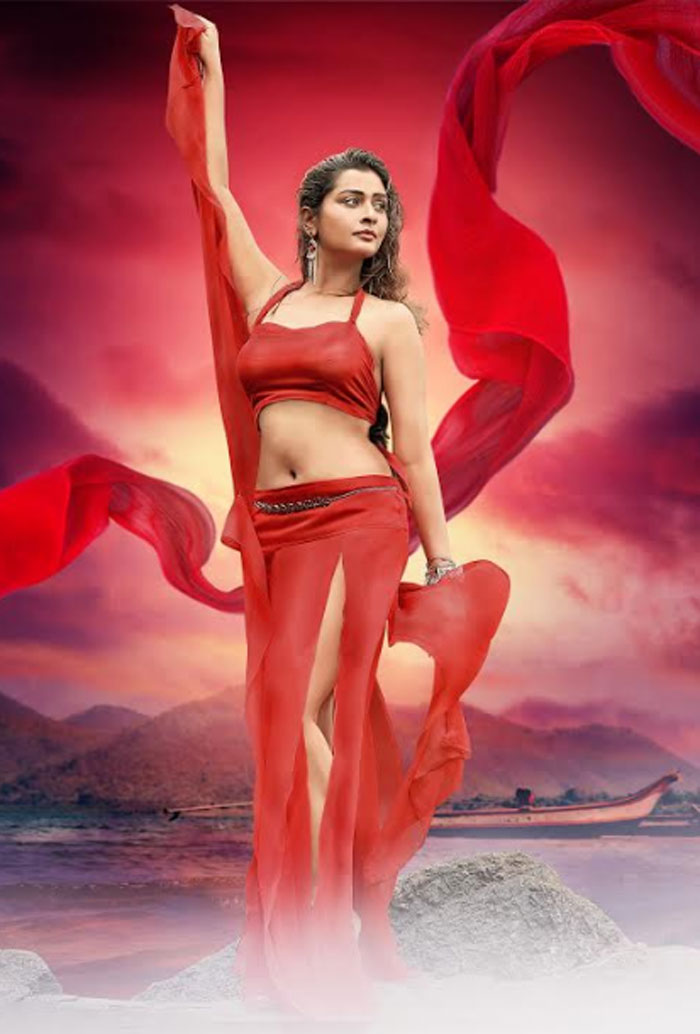 payal rajput,red hot,photos,released,rdx love movie  ఆర్ఎక్స్ బ్యూటీ ఆర్.డి.ఎక్స్. అందాల్లో..!