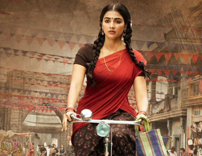 pooja hegde,special role,valmiki movie  'వాల్మీకి'.. పూజా కోరిక తీర్చుతాడా? లేక?