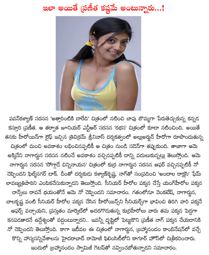 pranitha,pranitha not accepted nagarjuna movie,lavanya tripati replaces the pranitha in soggade chinninayana,soggade chinninaayana movie updates,kalyan krishna,rfc,nagarjuna,ramya krishna  pranitha, pranitha not accepted nagarjuna movie, lavanya tripati replaces the pranitha in soggade chinninayana, soggade chinninaayana movie updates, kalyan krishna, rfc, nagarjuna, ramya krishna