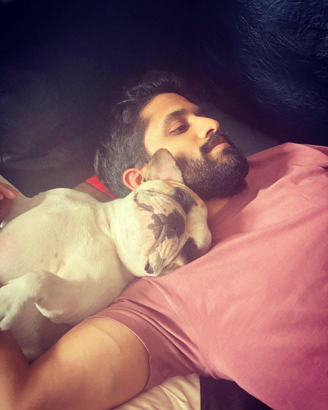 naga chaitanya,love story,love story promotions,hash akkineni,samantha akkineni,lovey moments,pet dog hash,national pets day  హాష్ అక్కినేనితో రిలాక్స్ అవుతున్న చైతు