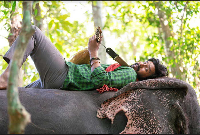 vishnu visha,elephant friend,aaranya movie,look,release  'అరణ్య'లో విష్ణు విశాల్ లుక్ ఇదే!